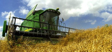 Developing a sensible biofuels strategy for Germany