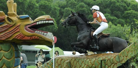 Germany takes equestrian lead amid spills and surprises