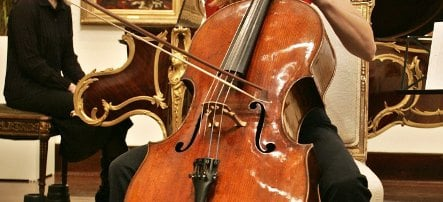 Conductor throws 12-year-old cellist off train