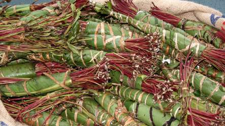 Man arrested with 300 kilos of chewing drug Khat