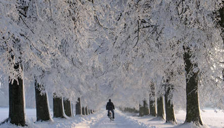 Deep freeze continues in Germany