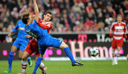 Bayern 'won't leave Hoffenheim in peace' until they're back on top