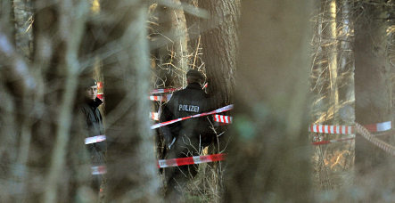 Missing person's bones found hanging in tree 29 years later