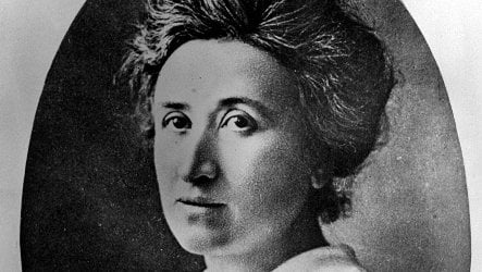 Hundreds of DNA leads to Rosa Luxemburg's identity reported