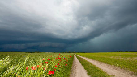 Odin's wrath brings storms to Germany