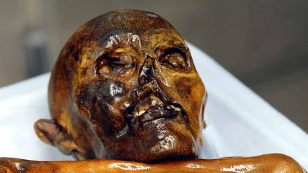Alpine hikers get finder's fee for Stone Age mummy Ötzi