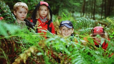 Leaving your children in the woods – on purpose