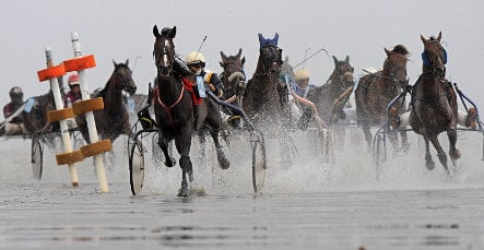 Horses gallop 'on the bottom of the ocean'