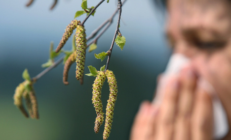 Good and bad news for allergy sufferers this year