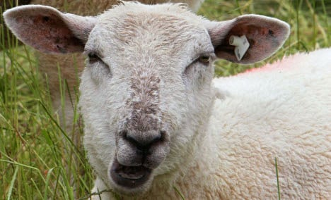 'Sheep's Chill' weather pattern to create dreary weekend