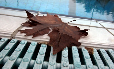 Summer takes a break as cool weather returns