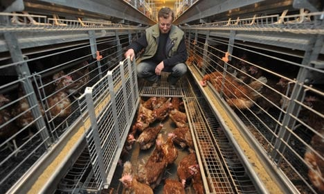 Animal protection means higher food prices, minister says
