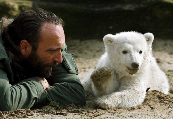Knut was reared by his keeper Thomas Dörflein, who bottle-fed him and strummed Elvis Presley songs for the cub on his guitar. Dörflein died at age 44 of a heart attack in 2008.Photo: DPA