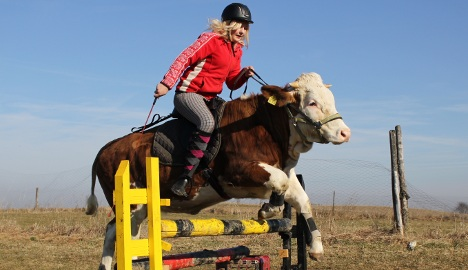 Bavarian cowgirl udderly over the moon about leaping Luna