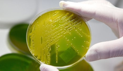 Hunt for source of deadly E. coli source continues