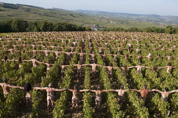 700 nudes link arms in a Burgundy vineyard to protest against climate change.Photo: DPA