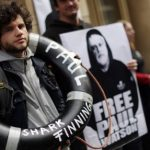 Sea Shepherd offered bail, can't leave Germany