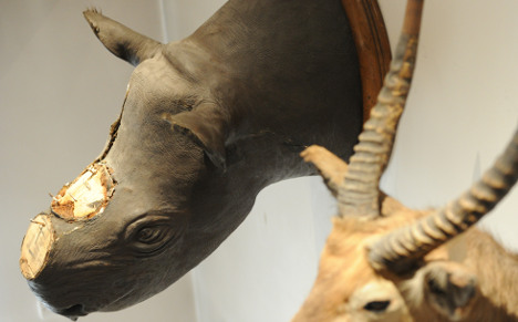 Brits jailed for stealing museum rhino horns