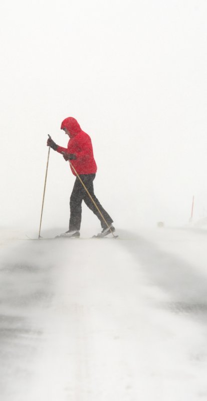 Intrepid winter sports enthusiasts have been quick to profit from conditions. A skier in Saxony sets outPhoto: DPA