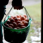 Organic label calls for return to 'real farming'