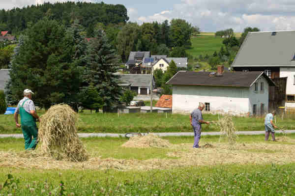 <b>Work on a farm:</b> Spend the summer outdoors. The website workawayinfo.com has adverts for Germans needing help with their building projects and farms. The family will put you up. Photo: DPA
