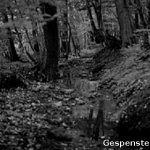 There is a small area of forest in Kirchlengern which has had locals, forester and even the police lost for words. Muttering of mysterious happenings have been traced back to the 12th century and can still be heard today. People walking through report the same feelings of being unsettled, being watched and being overcome with panic for no reason. Animals have often gone missing from the town, their blood and hair being found strewn around this area of woodland. Photo: gespensterweb
