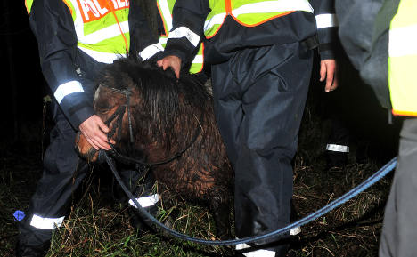 Lucky escape for girl and her little pony