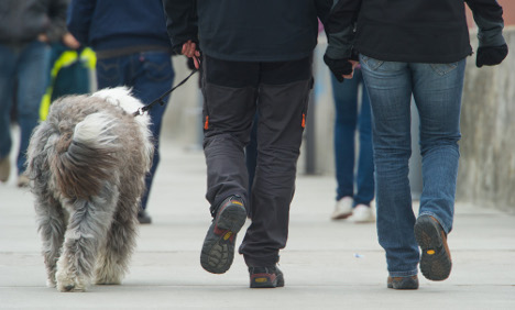 Berlin set to put all dogs on leads under new law