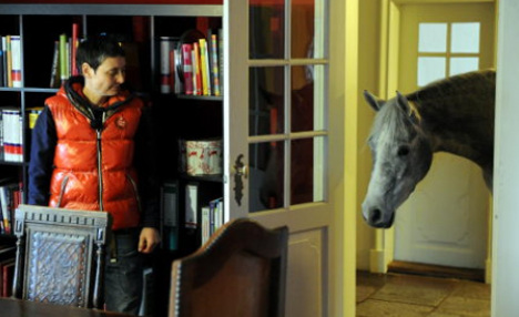 Horse moves into home and won't leave