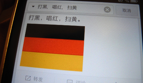 German flag goes viral in China as sex trade sign