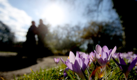 Forecasters: Winter is over, 14C highs this week