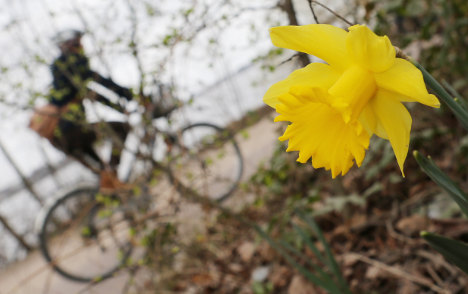 Ten ways you know it's spring in Germany