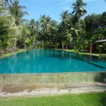 """Koh Chang (cont'd). Chill winds versus the cooling shade of a palm tree. You decide. <b><a href=""""http://www.holidaylettings.co.uk/rentals/koh-chang/1296461?utm_source=The+Local+Sweden&amp;utm_medium=CPA&amp;utm_campaign=Search+now+button"""" _blank""""="""""""">Find out more here</a>.</b>Photo: Holiday Lettings"""
