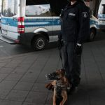 The police dogs were constantly barking at protestors. This one takes a short rest.Photo: J. Arthur White