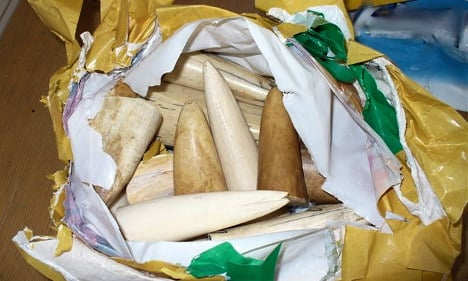 Ivory smugglers fail with sweet tooth lie
