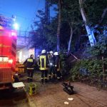 Fire crews were called to the help those injured in the tree fall.Photo: DPA