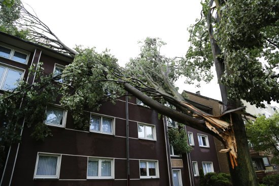 Six killed in storms in western Germany