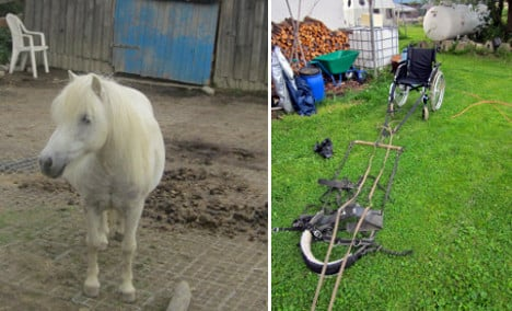 Pony-drawn wheelchair ride ends in injury