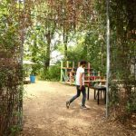 Little Wood's gate opens at 12:00 dailyPhoto: Tomas Urbina