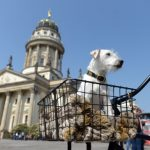 """<b>Cathedral views:</b> One of two beautiful cathedrals located on the Gendarmenmarkt square, the German Cathedral is home to a museum of parliamentary democracy in German entitled <a href=""""http://www.berlin.de/en/museums/3109333-3104050-deutscher-dom.en.html"""">""""Paths, Losing Track and Detours""""</a> which is free. You can also go up the French Cathedral for €3 to enjoy some great views.Photo: DPA"""