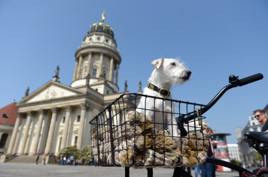 12 things to do in Berlin for less than a latte