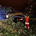 Firefighters clear a fallen tree that blocked a road in Freiburg.Photo: DPA