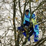 A refugee huddles into his blanket in the branches on Thursday early morning. The hunger strikers took to the trees after dozens of officers cleared out Sendlinger Tor in Munich following concerns the refugees could get hypothermia in dropping temperatures.Photo: DPA
