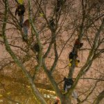 Refugees sit in a tree while police send food, drink and blankets to the protesters via rope and ladder. The hunger strikers took to the trees after dozens of officers cleared out Sendlinger Tor in Munich following concerns the refugees could get hypothermia in dropping temperatures. Photo: DPA