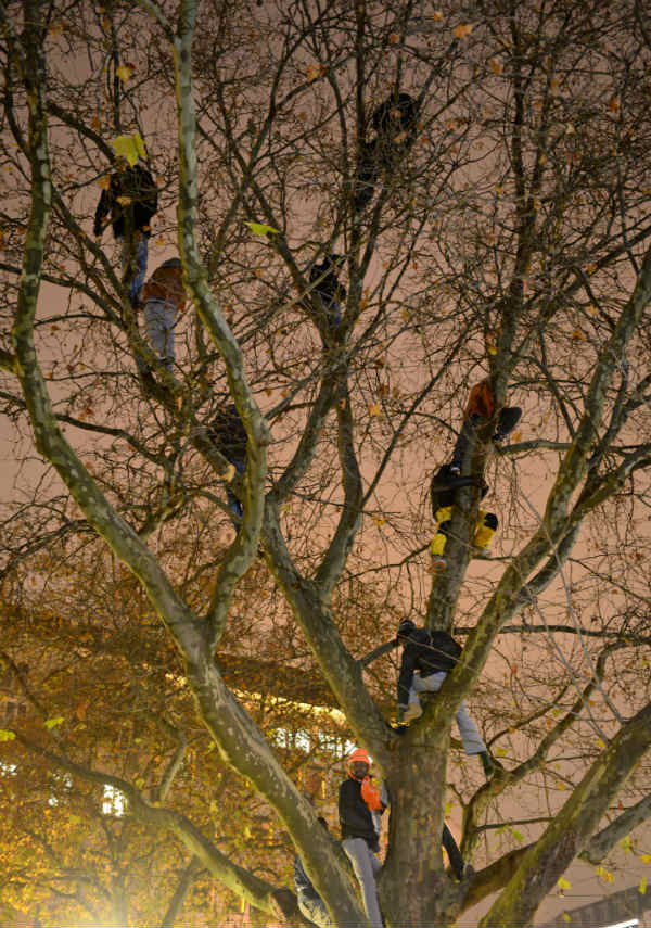 Refugees take to trees to keep their hunger strike going