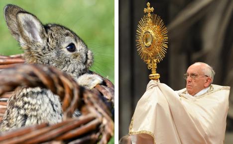 Breeders say Pope's 'rabbits' comment 'unfair'