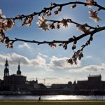 Having been voted the most popular cycle route in the Germany ten years in a row by members of the German Cyclists' Federation, the Elbe Cycle Route features highly on our list. The trail boasts highlights that include Dresden's Semper Opera House and Church of Our Lady.Photo: DPA