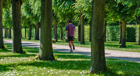 Scientists hunt climate change in Berlin parks