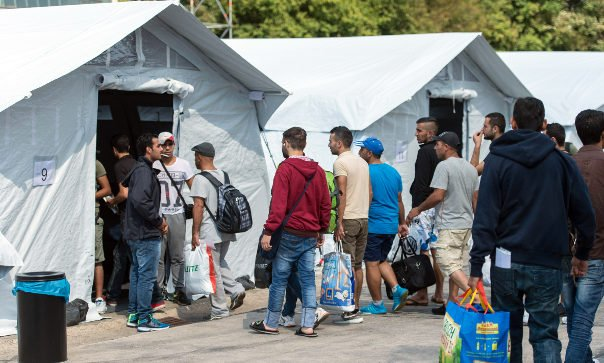 State leaders call for faster asylum processes