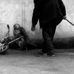 A trainer looms over this rhesus macaque monkey - part of a story on the ban on animal circuses in China which has passed many parts of the country by and failed to stop animal cruelty.Photo: Yongzhi Chu, China